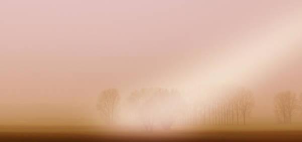 Fog Digital Art - Foggy Morning by Franziskus Pfleghart