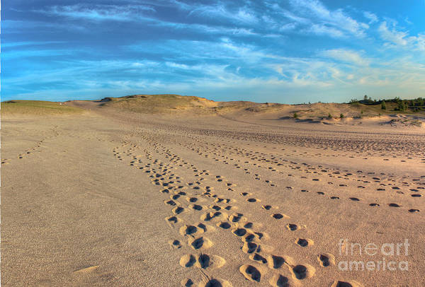 National Lakeshore Wall Art - Photograph - Footprints Through Dunes by Twenty Two North Photography