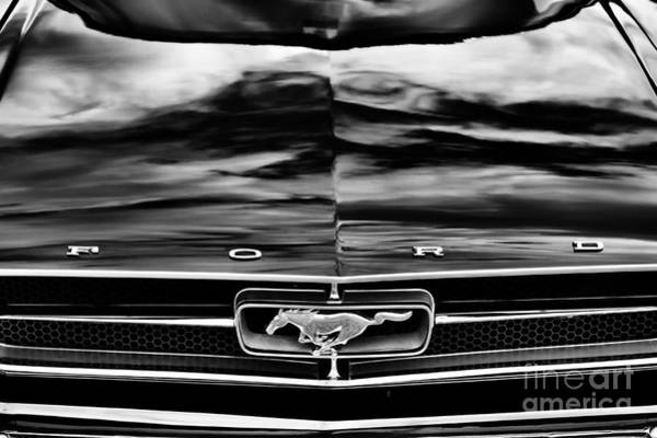 White Horse Photograph - Ford Mustang Monochrome  by Tim Gainey