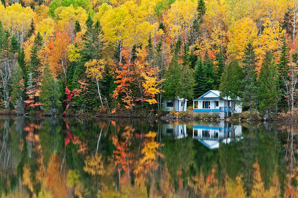 Photograph - Forest And House Reflections by U Schade