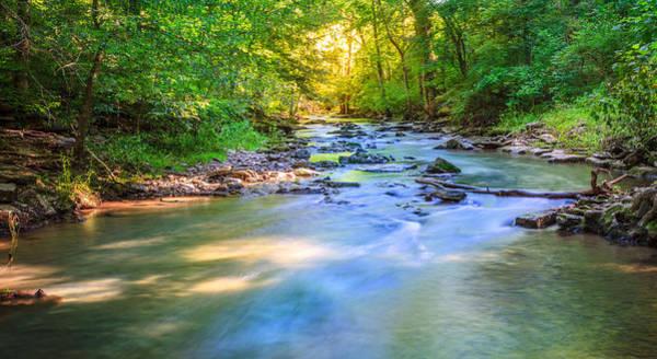 Village Creek Photograph - Forest Creek by Alexey Stiop