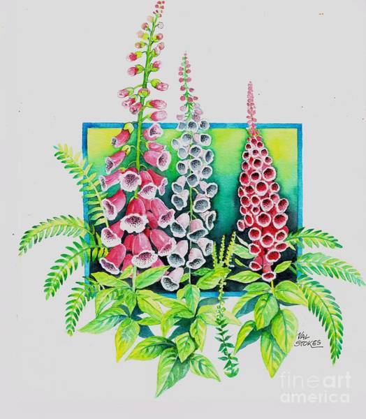 Painting - Foxgloves by Val Stokes