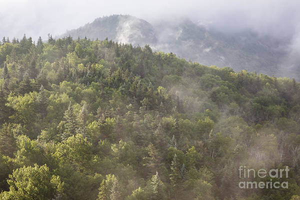 Photograph - Franconia Notch State Park - White Mountains Nh Usa by Erin Paul Donovan