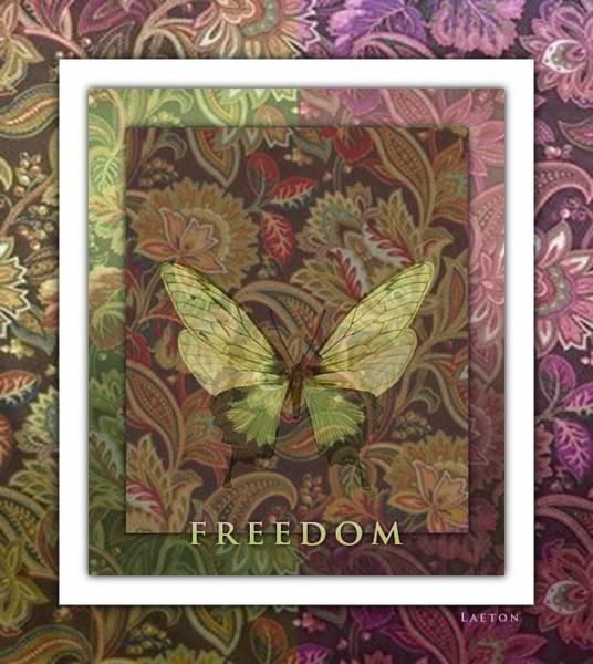 Photograph - Freedom by Richard Laeton