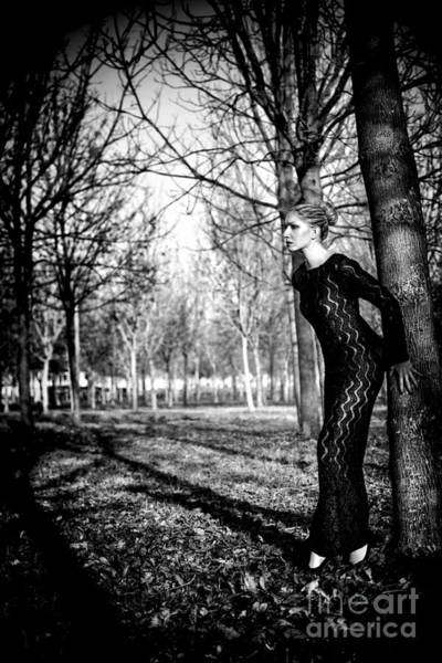 Photograph - Frozen Memories by Traven Milovich
