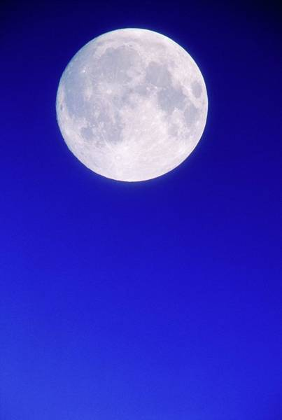 Wall Art - Photograph - Full Moon Seen From Earth by David Nunuk