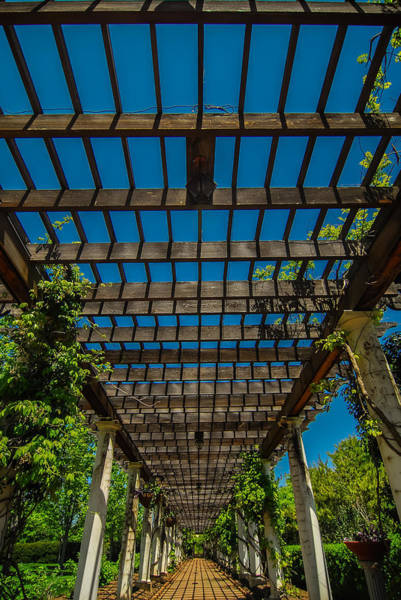 Photograph - Garden Lattice Walkway With Stone Pavers And Vine Flowers Throug by Alex Grichenko