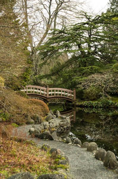Photograph - Garden Bridge by Marilyn Wilson