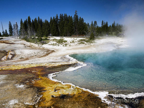 Photograph - Geothermal Activity by Brenda Kean