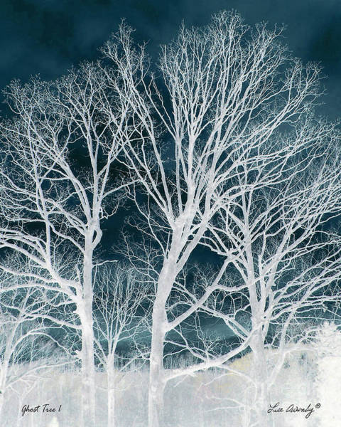 Photograph - Ghost Tree 1 by Lee Owenby