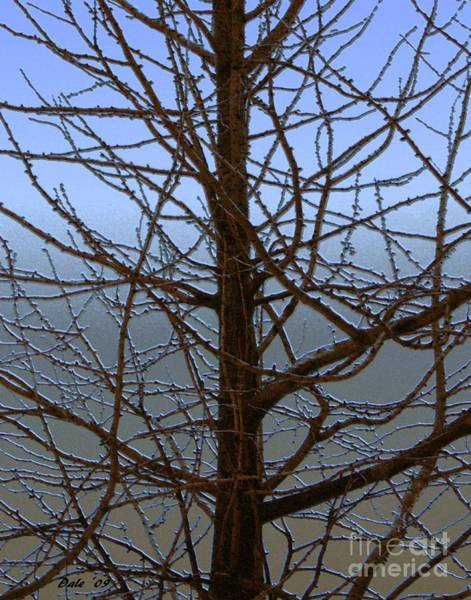 Digital Art - Ginko In Winter by Dale   Ford
