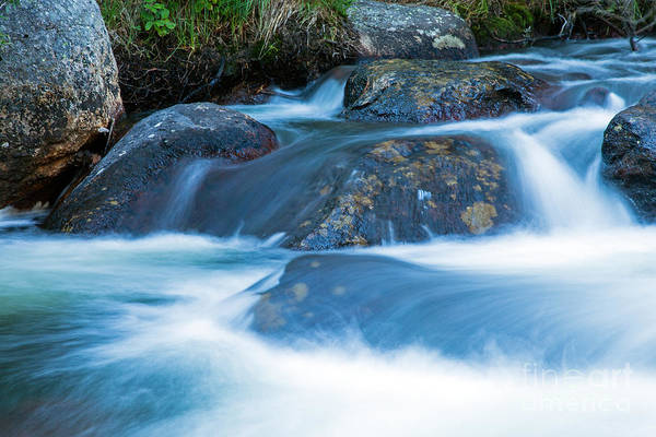 Photograph - Glacier Creek In Rocky Mountain National Park by Fred Stearns