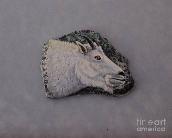Painting - Glacier Park Mountain Goat by Bob Williams