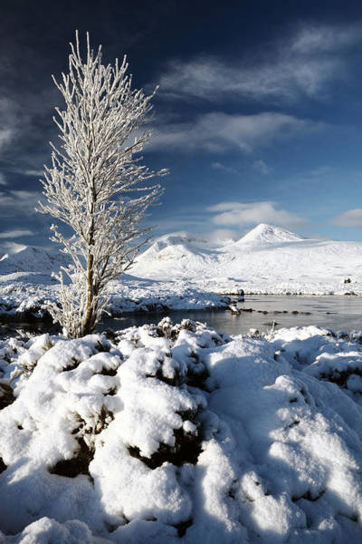 Photograph - Glencoe Winter by Grant Glendinning