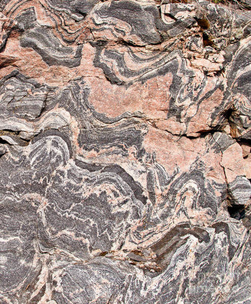 Photograph - Gneiss Rock  by Les Palenik