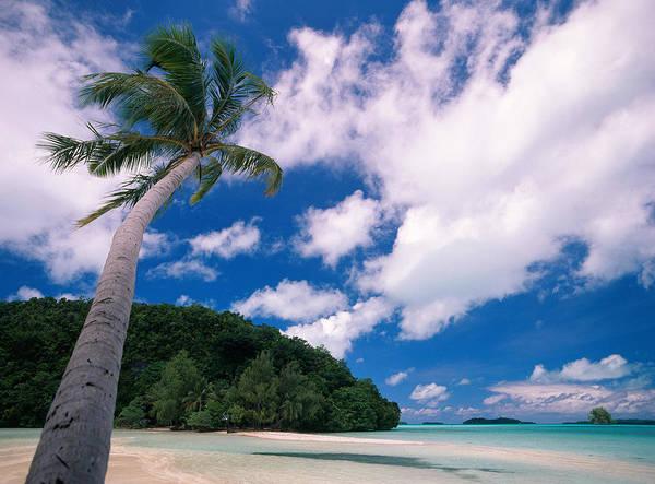 Wall Art - Photograph - Gnemelis Island, Palau by F. Stuart Westmorland