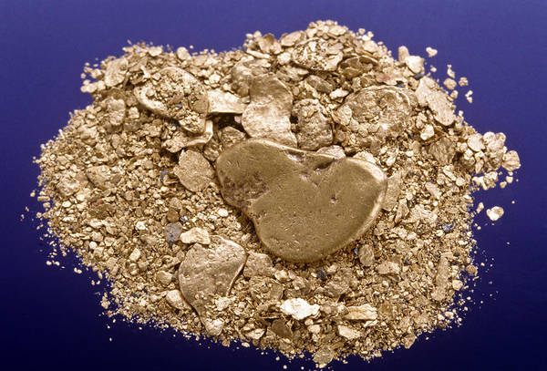 Gold Dust Photograph - Gold Flakes & Dust by Charles D. Winters