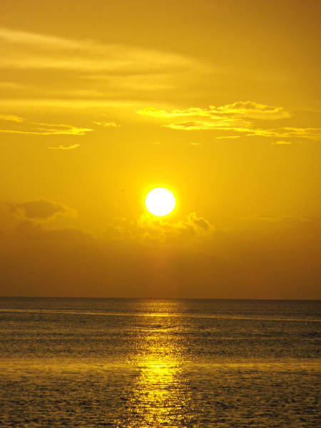 Photograph - Golden Bahamas Sunset by Kimberly Perry