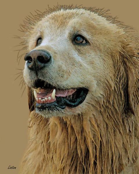 Digital Art - Golden Retriever by Larry Linton