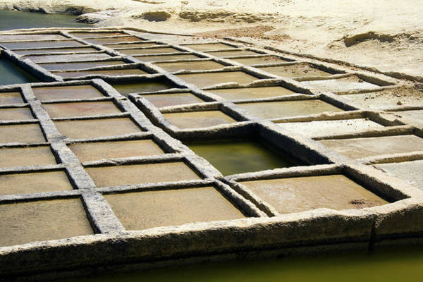 Salt Pond Photograph - Gozo Salt Pans by Steve Allen/science Photo Library