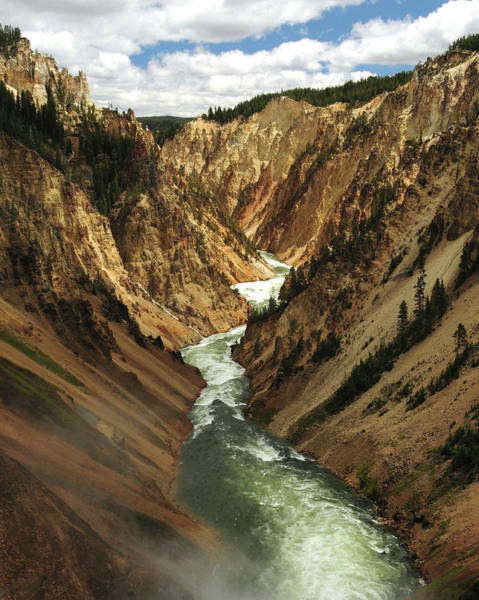 Yellowstone Canyon Photograph - Grand Canyon Of The Yellowstone by Michel Hersen