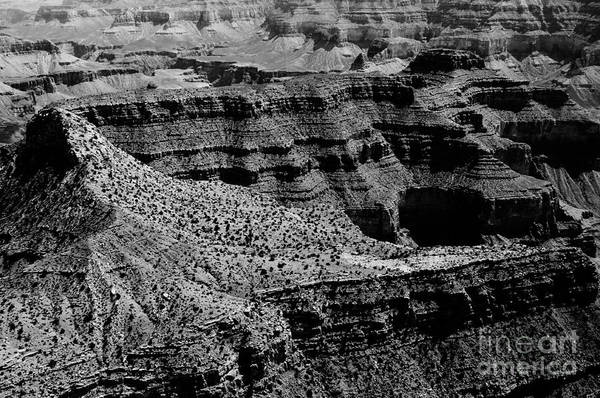 Photograph - Grand Canyon by Thomas R Fletcher