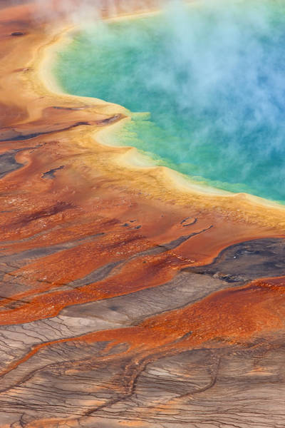 Photograph - Grand Prismatic Pool Yellowstone Np by Ingo Arndt