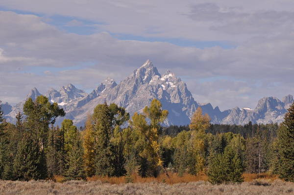 Photograph - Grand Teton by Frank Madia
