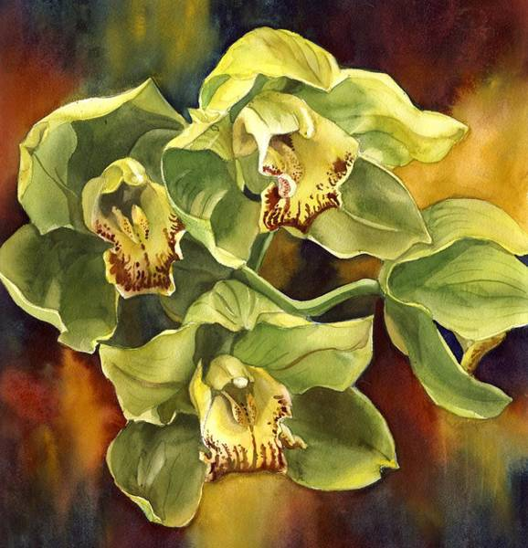 Painting - Green Cymbidium Orchid by Alfred Ng