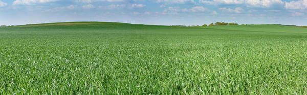 Wall Art - Photograph - Green Field by Wladimir Bulgar/science Photo Library