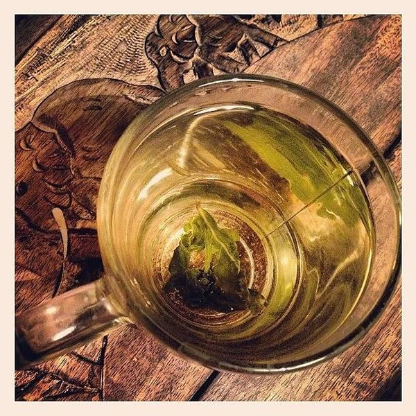 Wall Art - Photograph - Green Tea by Marina Boitmane