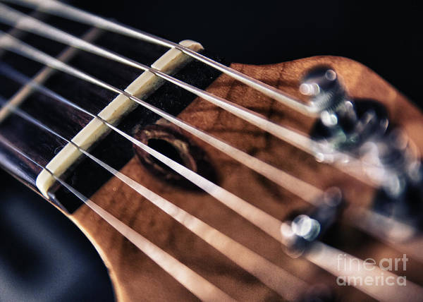 Guitar Neck Photograph - Guitar Strings by Stelios Kleanthous