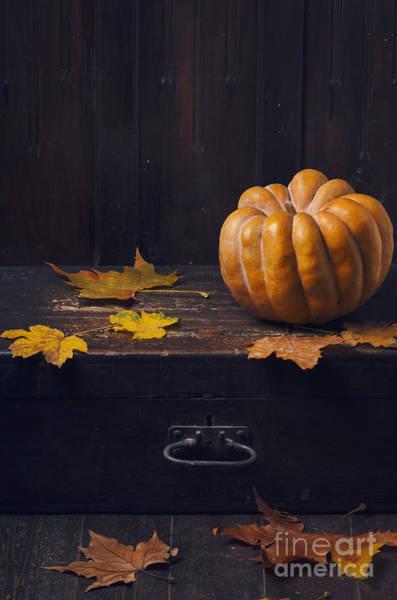 Wall Art - Pyrography - Halloween Pumpkin by Jelena Jovanovic