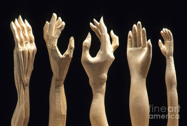 Carve Photograph - Hands Of Wood Puppets by Bernard Jaubert