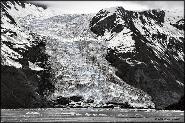 Photograph - Harriman Fjord by Erika Fawcett
