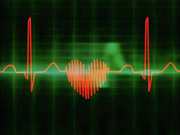 Heart Attack Wall Art - Photograph - Heart-shaped Ecg Trace by Alfred Pasieka