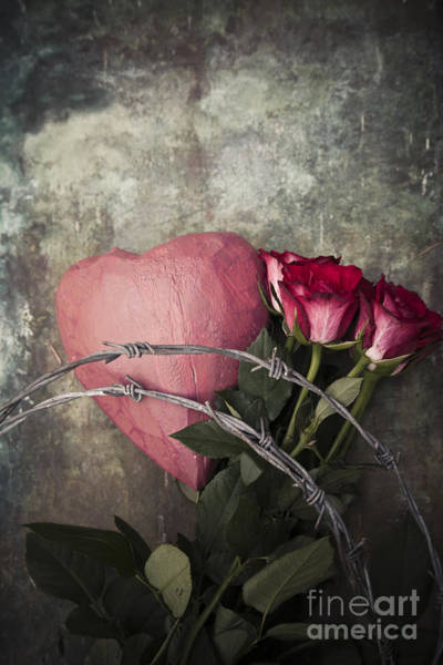 Photograph - Heartbreak by Maria Heyens