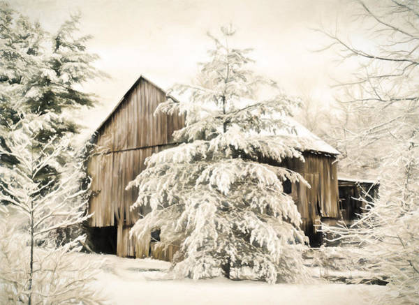 Wall Art - Photograph - Heavy Snow by Kathy Jennings