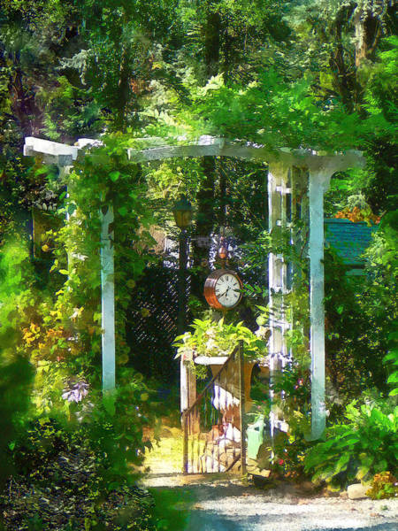 Photograph - Hidden Garden by Susan Savad