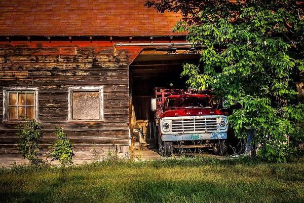 Photograph - Hiding Out by Chuck De La Rosa