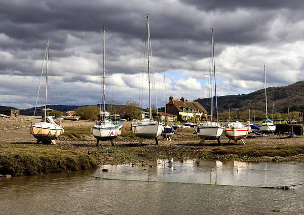 Shirleys Bay Photograph - High And Dry by Shirley Mitchell