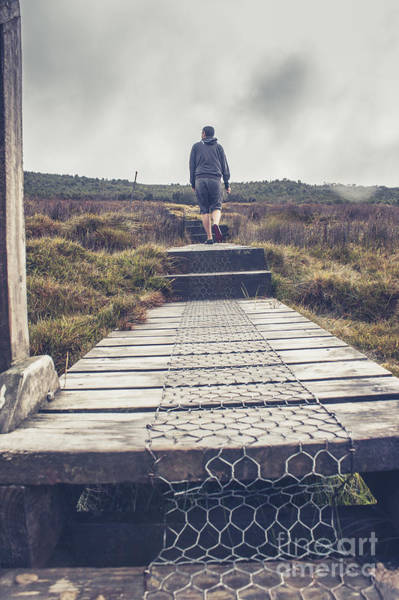Hikers Photograph - Hiker On The Overland Track In Cradle Mountain by Jorgo Photography - Wall Art Gallery