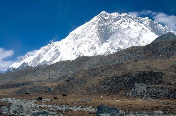 Wall Art - Photograph - Himalayas, Nepal by Alison Wright