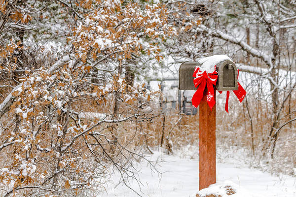 Photograph - Holiday Mail by Teri Virbickis