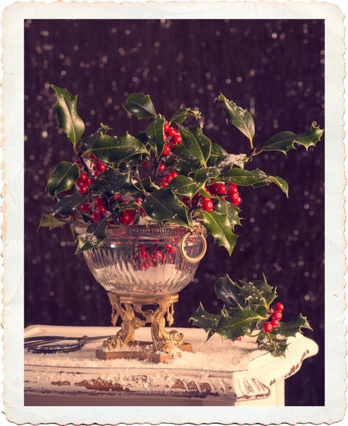 Green Berry Photograph - Holly And Berries by Amanda Elwell