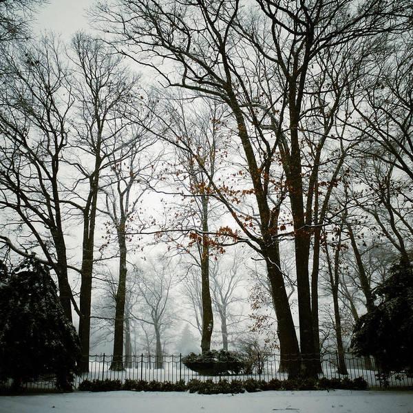 Photograph - Home by Natasha Marco