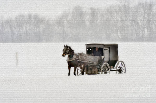 Photograph - Horse And Buggy In Snow Storm by Dan Friend