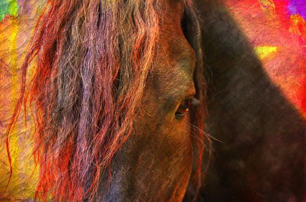 Wall Art - Painting - Horse  by Mark Ashkenazi