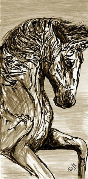 Drawing - Horse Twins I by Erich Grant