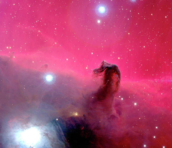 Canada-france-hawaii Telescope Wall Art - Photograph - Horsehead Nebula by J-c Cuillandre/canada-france-hawaii Telescope/science Photo Library